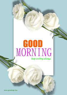 Good morning Free Flowers Wishes