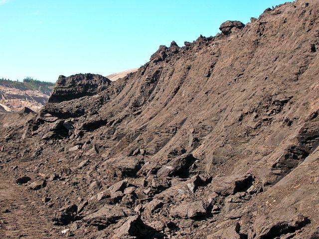 węgiel, brunatny, skała osadowa