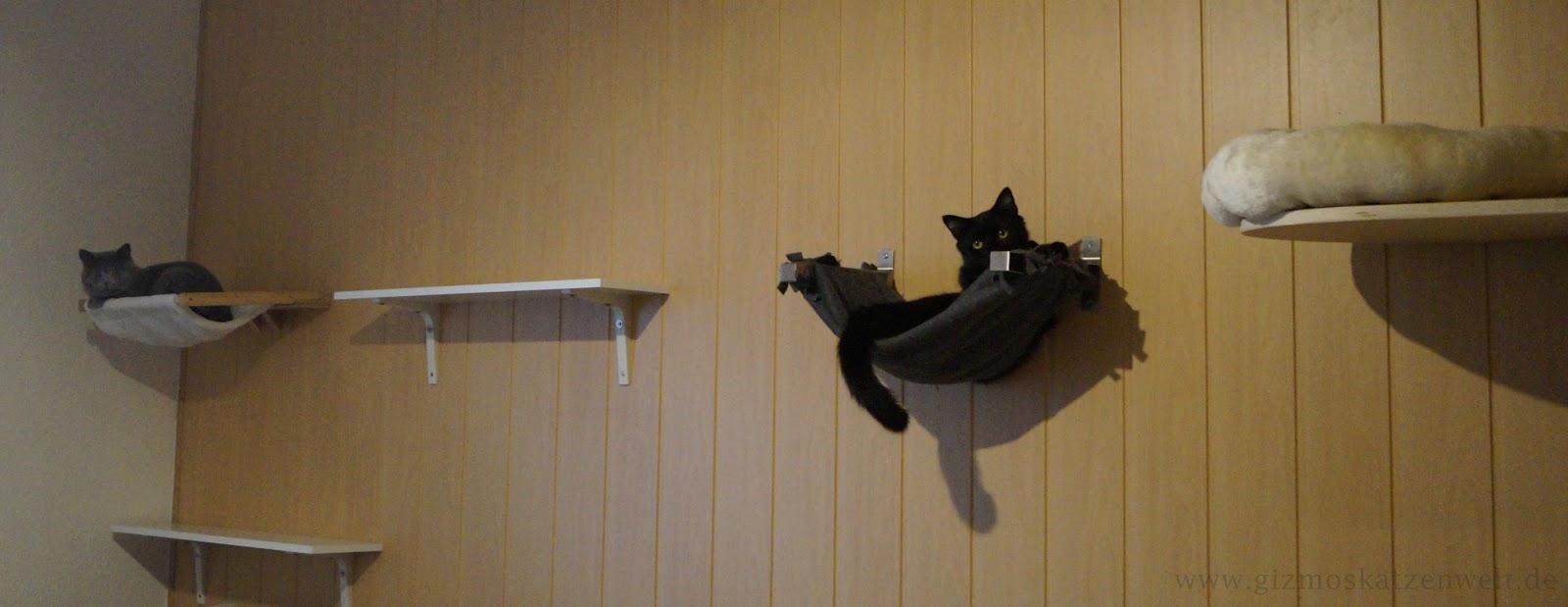 katzenblog alltag auf 4 pfoten diy catwalk einfach. Black Bedroom Furniture Sets. Home Design Ideas