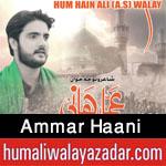 http://www.humaliwalayazadar.com/2017/09/ammar-haani-nohay-2018.html