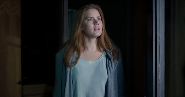 Arrival Film - Amy Adams
