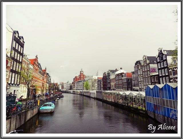 piata-plutitoare-cu-flori-amsterdam