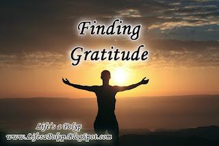 finding gratitude life's a polyp
