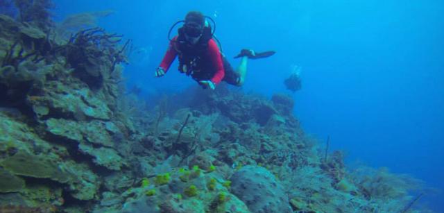 SSS Regional Coordinator Javi diving