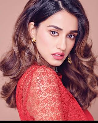 Disha Patani Latest Hot Images In 2019 Disha Patani Full