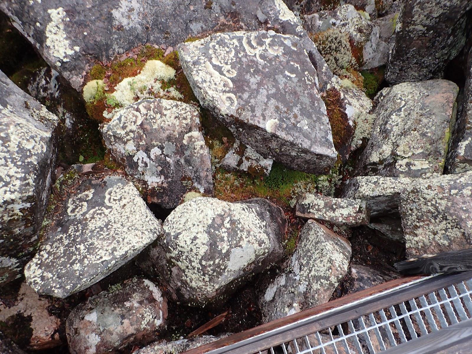 Kivikkoinen kuru Auttijoen tuntumassa