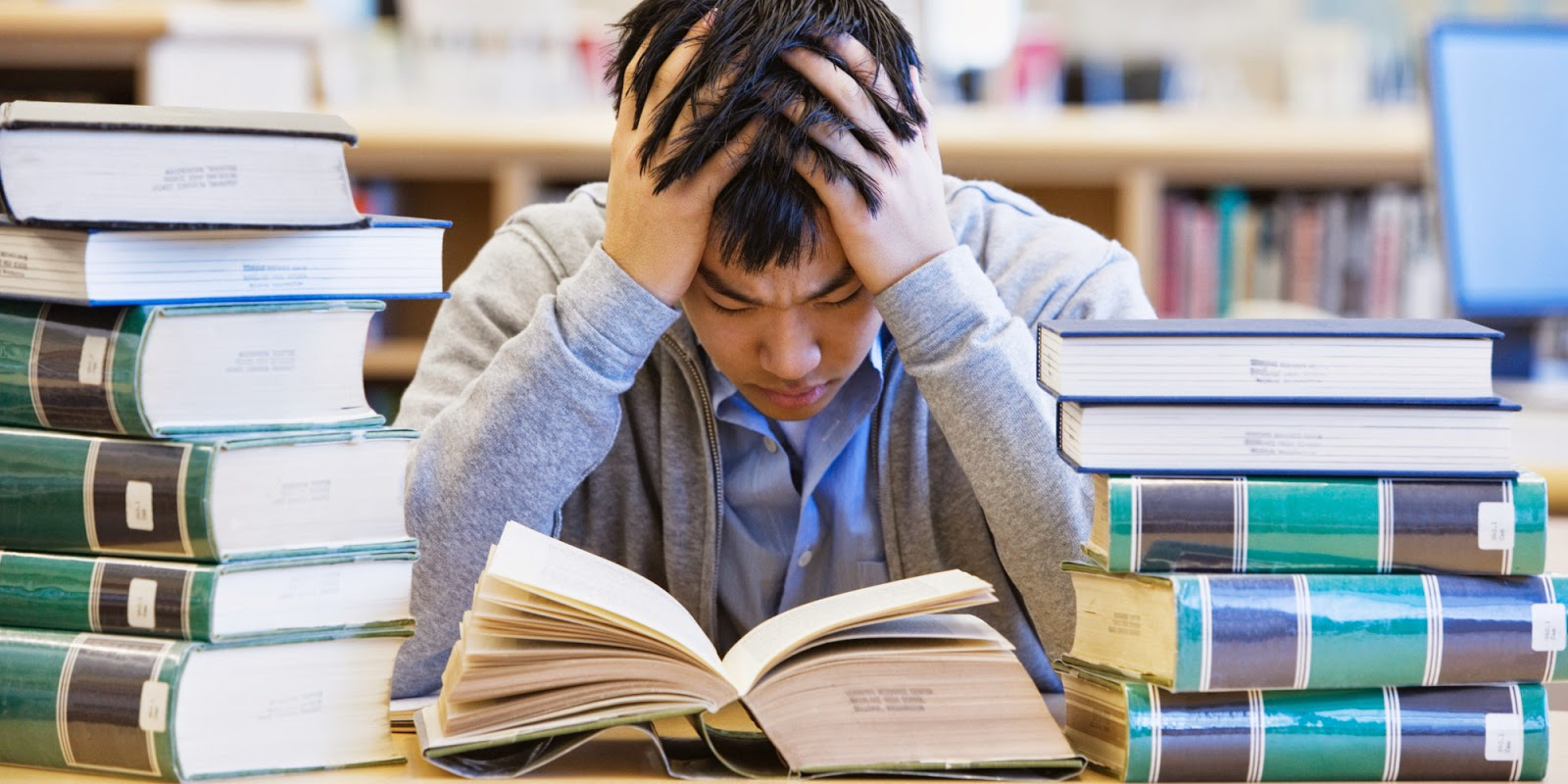 Business in a Sustainable Society: Student Stress in Business Schools: For  What?!