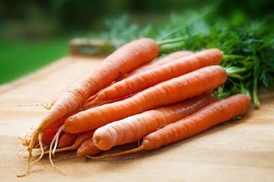 Peluang Usaha Sayuran Wortel
