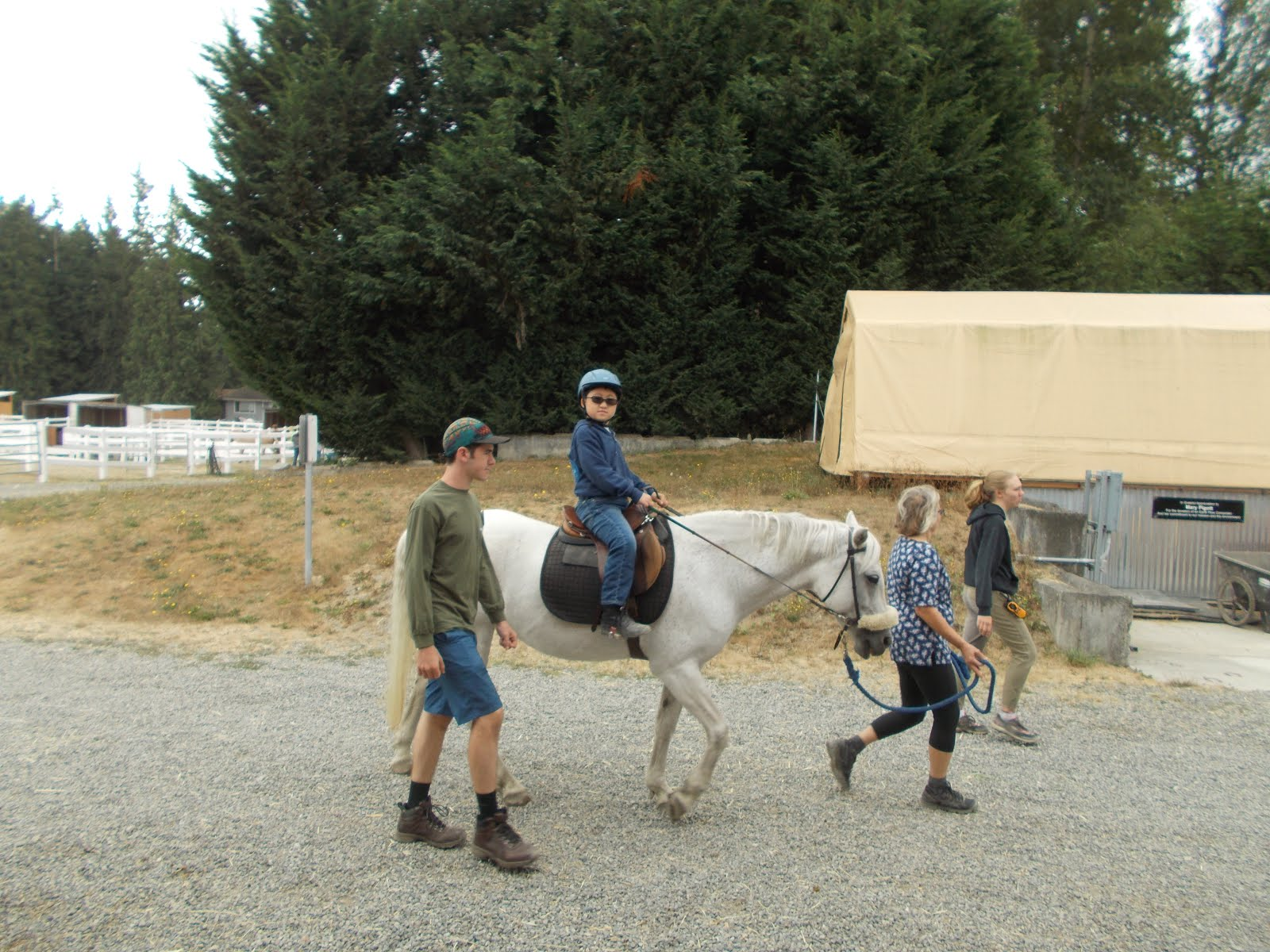 Little Bit Therapeutic Riding Center Summer Camp