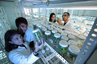 Materi Bioteknologi (Rangkuman SBMPTN)