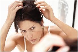 ila narai sariyaaga tips in tamil, Tips for Preventing white Hair, azhagu kurippugal narai mudi varamaal thadukkum murai,சீகக்காய் தயாரிக்கும் முறை, கூந்தல் இளநரைக்கு வீட்டு மருத்துவம்