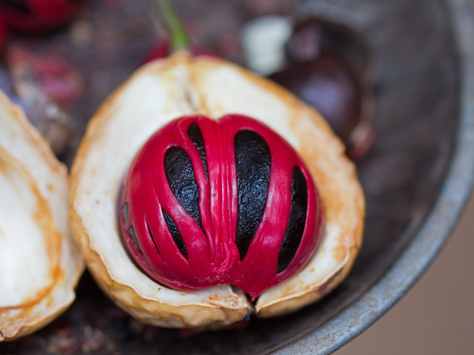 Is Nutmeg Hallucinogenic? - Herbs for Health and Wellness