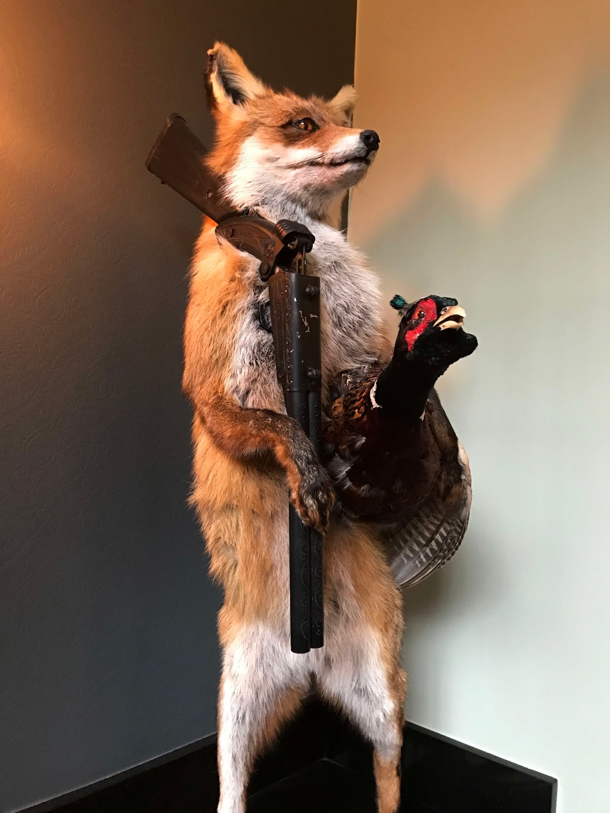 Review] Mr Fox, Parnell Square West, Dublin 1 | Stitch and Bear