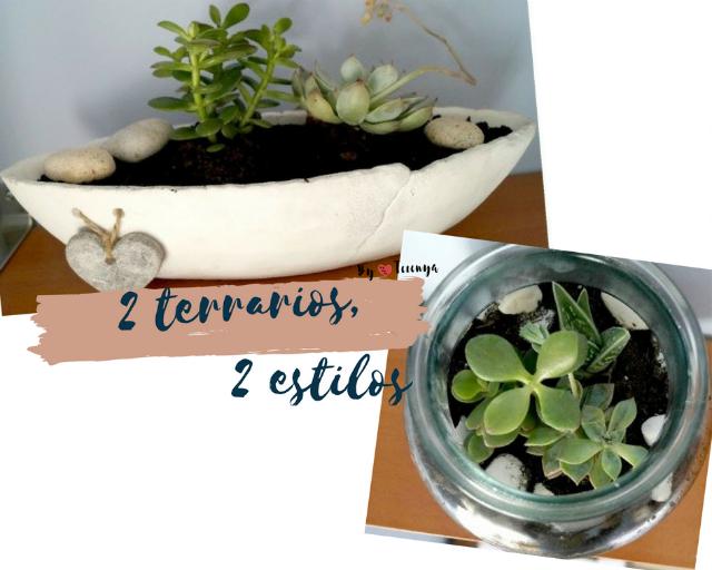 como-hacer-terrario-en-urna-de-vidrio