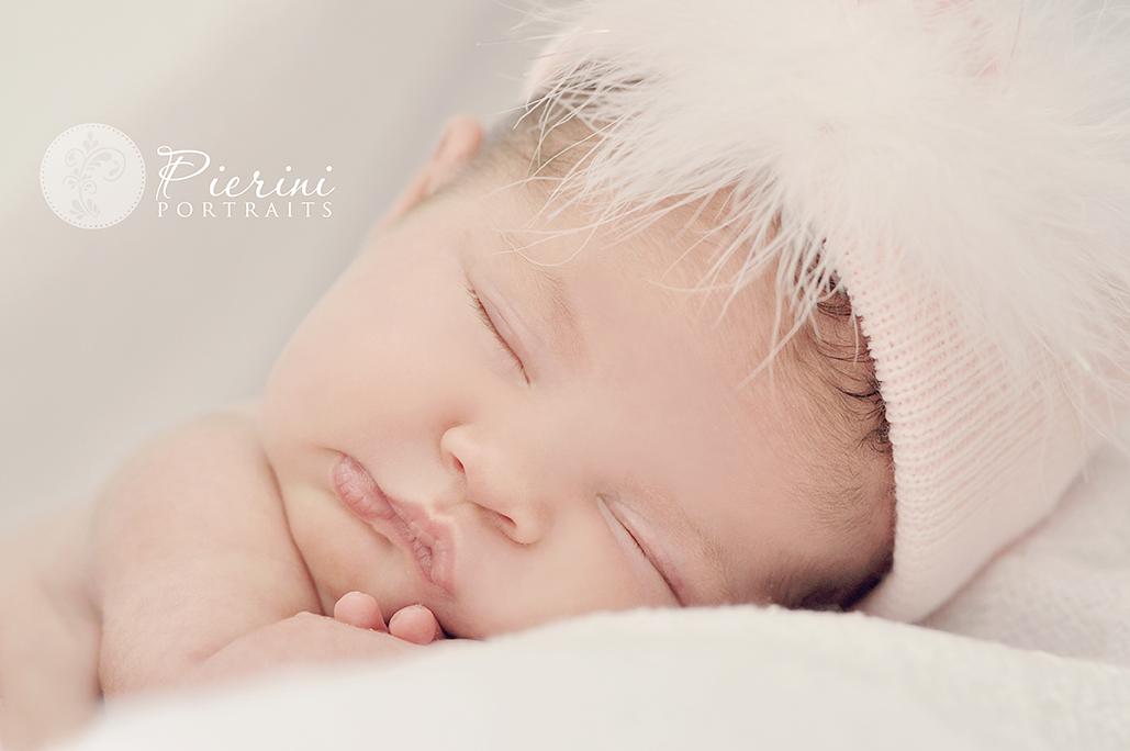 Like us on facebook tagwords new jersey newborn photographer