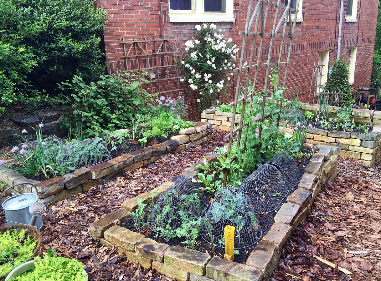 Natural Gardening Raised Bed Vegetable Gardening