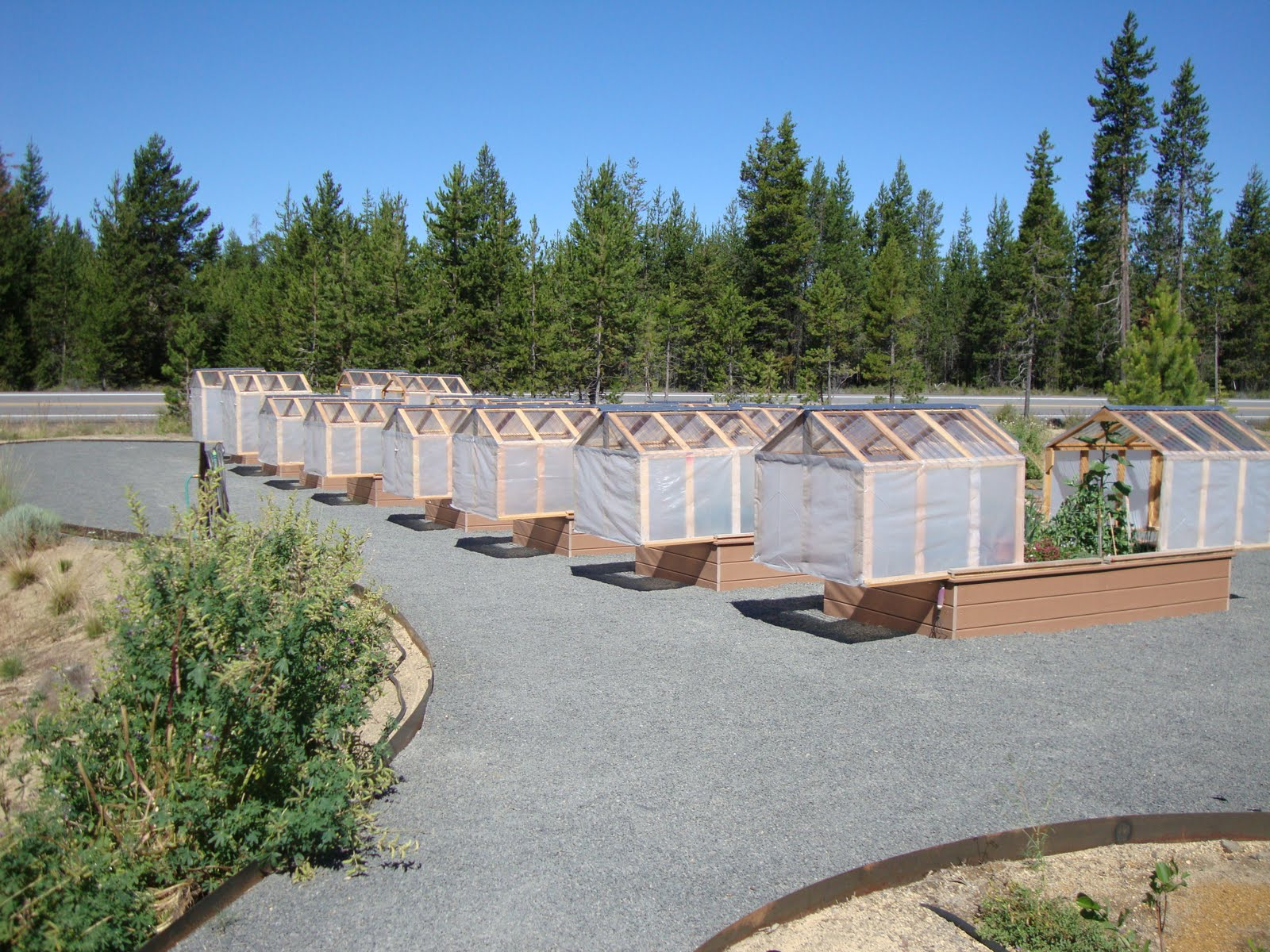 Mini Greenhouses Or Raised Beds Both