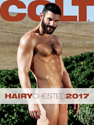 Colt Hairy Chested 2017 Calendar Gayrado Online Shop