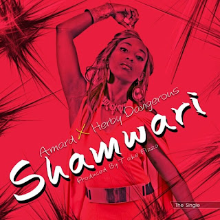 [feature]Amard - Shamwari (Feat. Herby Dangerous) (Prod. by Take Fizzo)