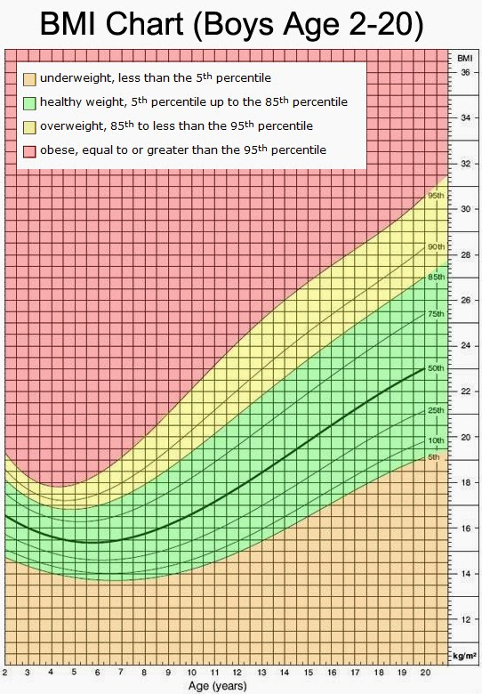 The Green Serviette Body Mass Index - Calculate Yours!