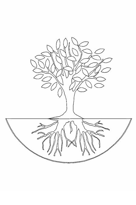 رسم شجرة بجذورها Feat