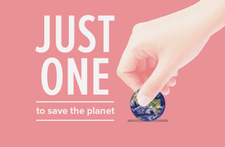 Save The Planet, One Home At A Time