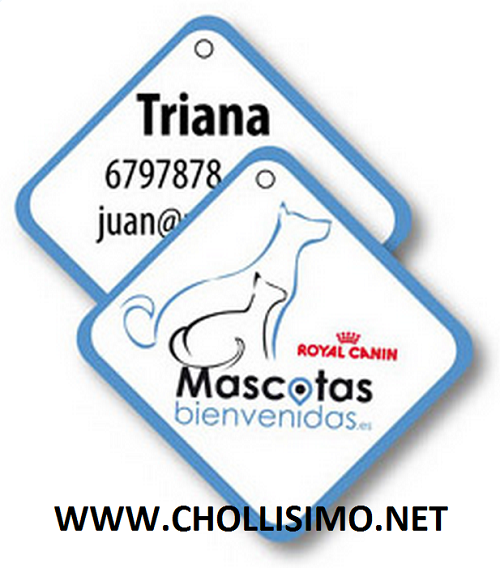 GRATIS Chapa Identificadora para Mascota