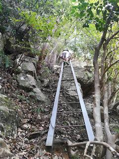 近江舞子から滝めぐり、楊梅の滝までハイキング