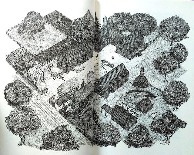 W książce jest bardzo dużo mniejszych i większych ilustracji