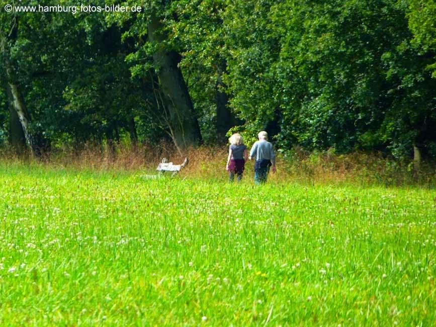 Wandern oder Spazieren gehen im Duvenstedter Brook