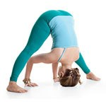 Wide Legged Standing Forward Bend Pose (Prasarita Paddotanasana)
