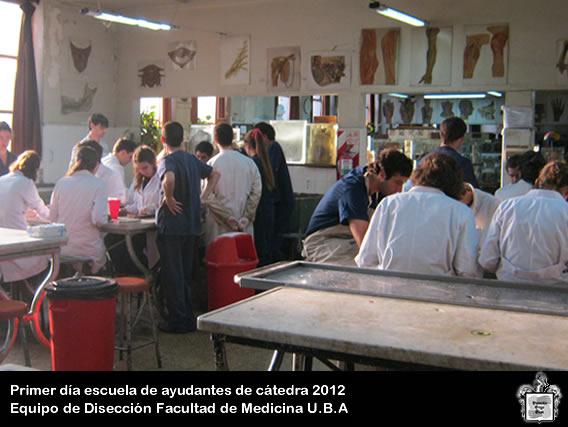 Facultad De Medicina  UBA Image: Equipo De Diseccion Dr. V.H.Bertone