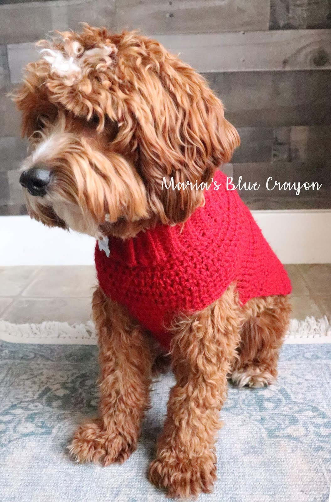 Crochet Dog Sweater Free Step By Step Tutorial Maria S Blue Crayon