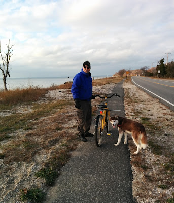 A bike leash for dogs makes bike riding with your dog much safer than a regular leash