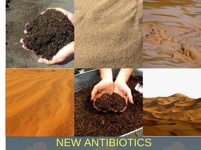 Malacidins- kháng sinh mới cực mạnh được tìm thấy từ hàng nghìn mẫu đất