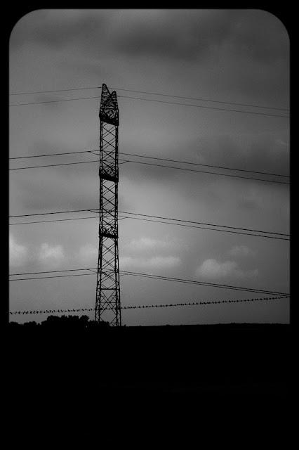 Koncepcyjna fotografia krajobrazu. Pięciolinia. fot. Łukasz Cyrus