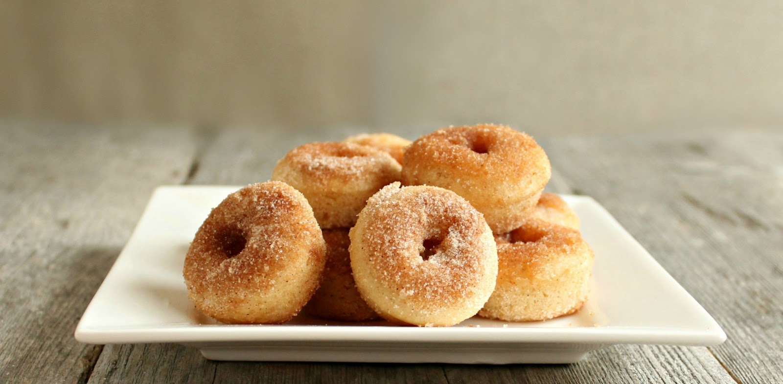 Hungry Couple Baked Cinnamon Sugar Mini Doughnuts