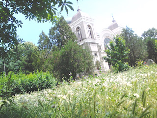 St Nicholas, Church, Rises, Long Grass, Yambol,