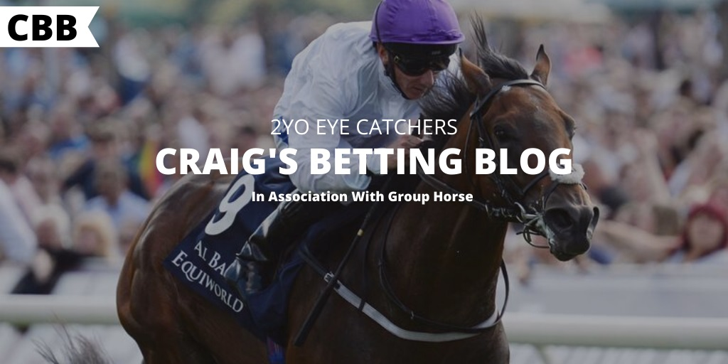 Craig's Betting Blog - 2YO Horse Racing Tips