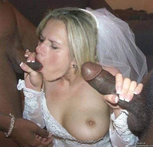 free pictures of brides sucking cock