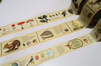 Encyclopedia Washi Tape