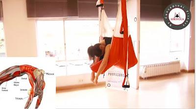yoga, aeroyoga, yoga aereo, yoga aerea, air yoga, fly, flying, pilates, fitness, formacion, certificacion, acreditacion, diploma, profesorado, cursos, clases, seminarios, talleres, sirena