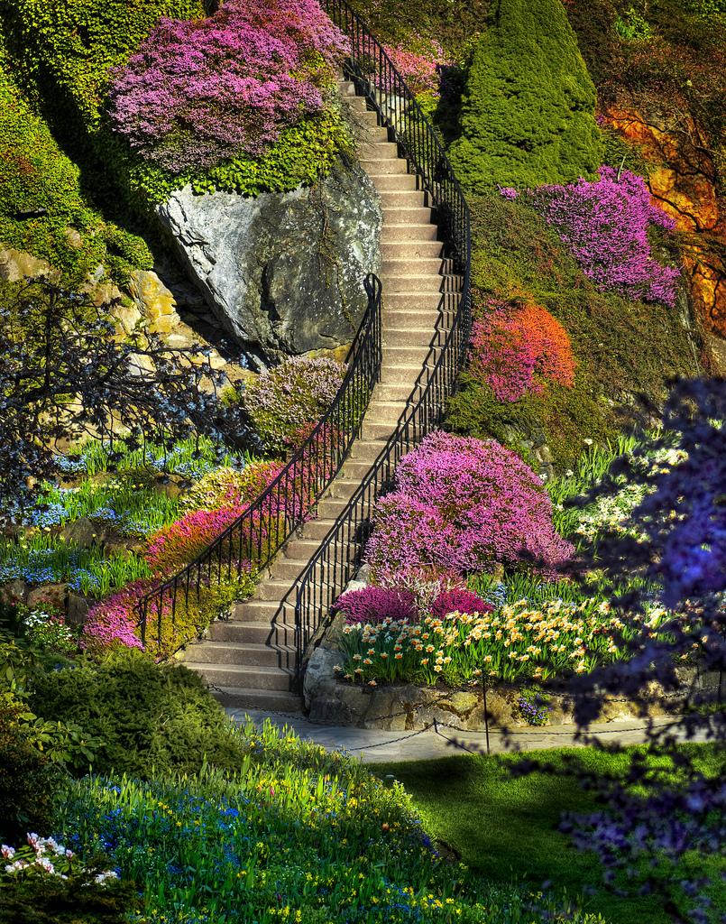 World Visits: Best Visit Place Botanical Garden