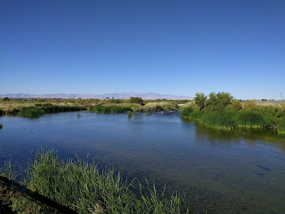Clark County Wetlands Park, NV