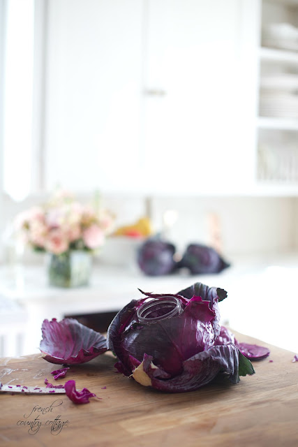 Cabbage becoming a vase in kitchen