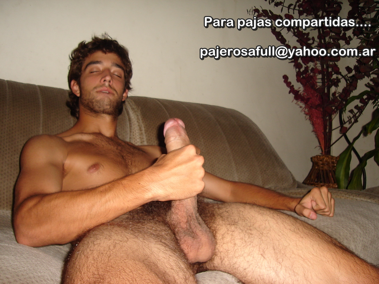 PAJEROS GAY
