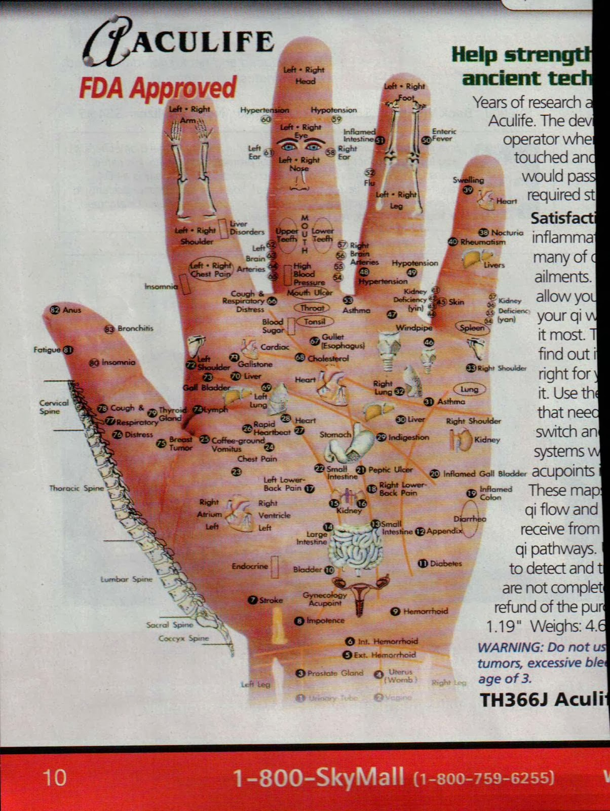Acupressure Diagram Of Pressure Points 2002 Jeep Wrangler Fuse Box Hand My Own Thoughts