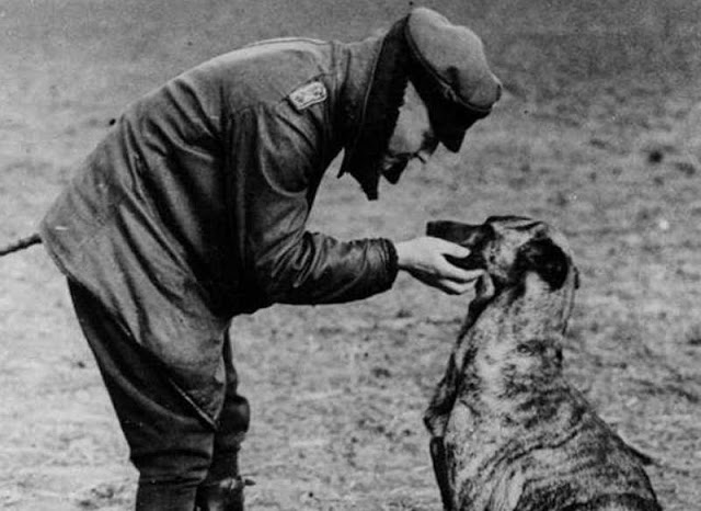 WWI German flying ace, 'The Red Baron' in flight jacket and cap, bends down to pet his dog. 1916 Dogfights and other stories of pilots. marchmatron.com