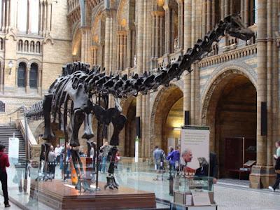 متحف التاريخ الطبيعي لندن