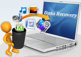 Data Recovery and High Availability Guide and Reference